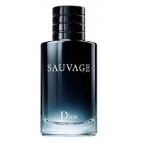 Christian Dior - Туалетная вода Sauvage 100 ml